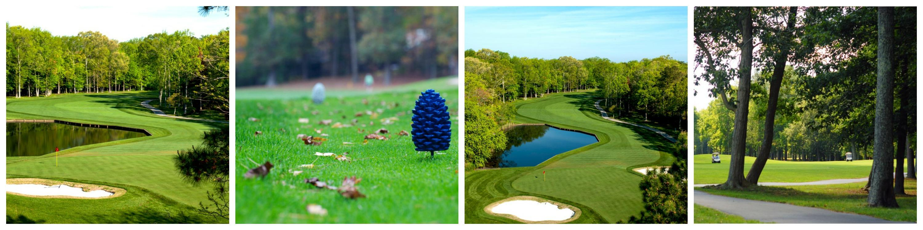 Golf Course Collage